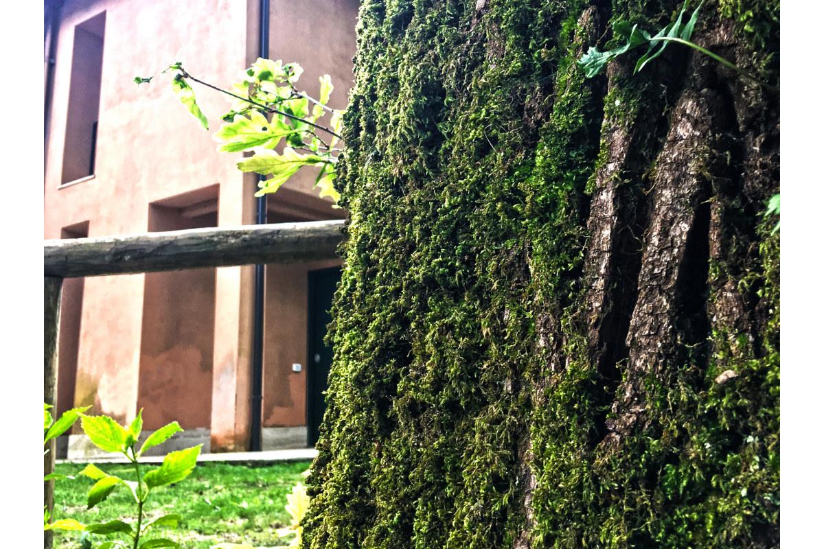 casa-bosco-2